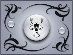 Скорпион. Фото с сайта xrest.ru