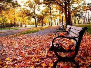 Осінь. Фото с сайта xrest.ru